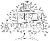 family-tree-clip-art